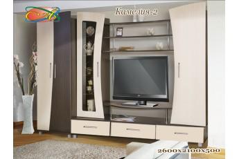 Стенка Камелия-2